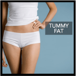 tummy fat